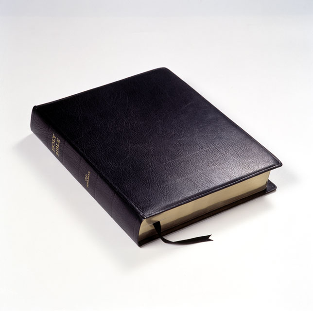 The Holy Bible : Old Testament